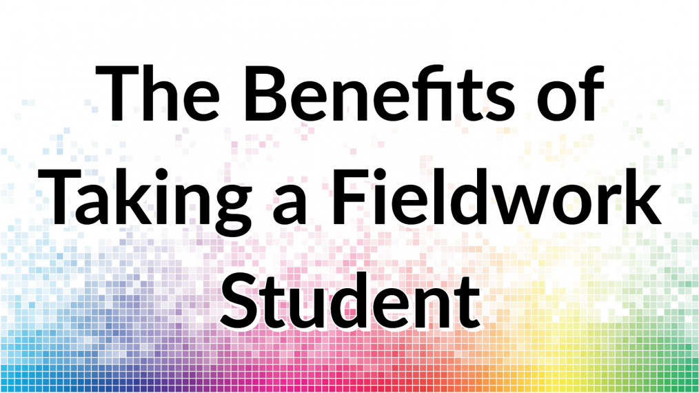 benefits taking fieldwork student