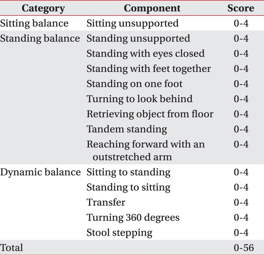 Components-of-Berg-Balance-Scale