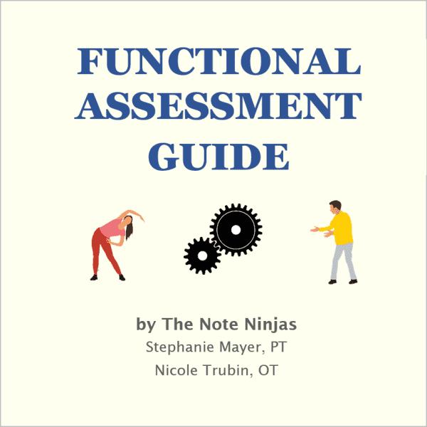 note ninjas functional assessment guide